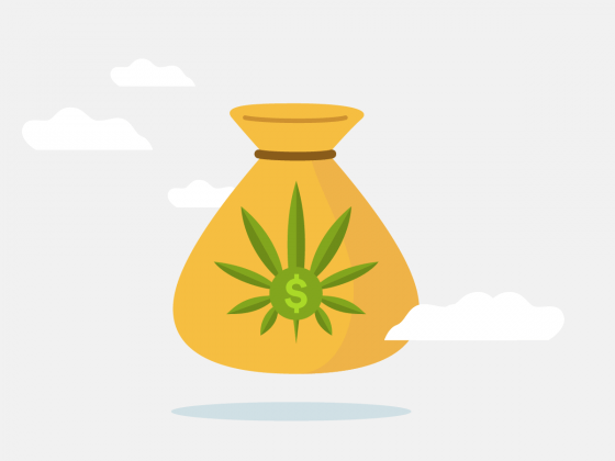 Advice for a First Time Cannabis User